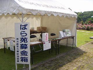 2008_05150058